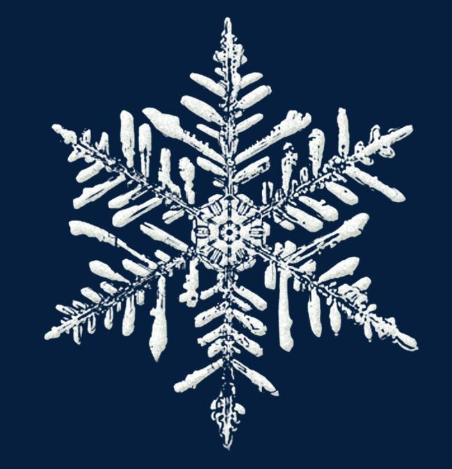 冬天白色雪花卡通图片