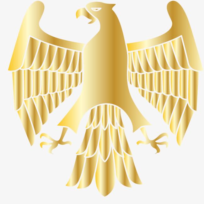 金色老鹰手绘简图