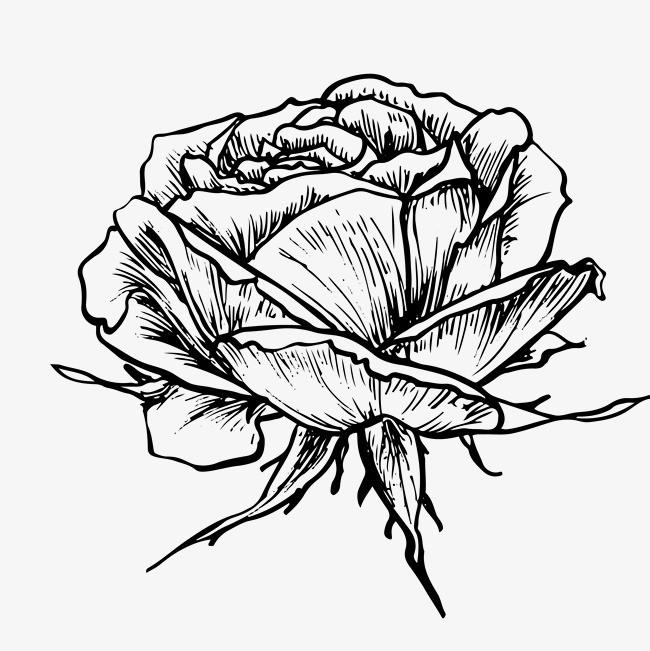 手绘涂鸦水彩花卉