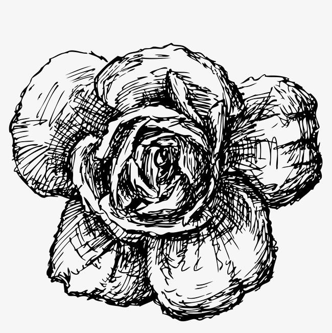 黑白花卉装饰玫瑰花