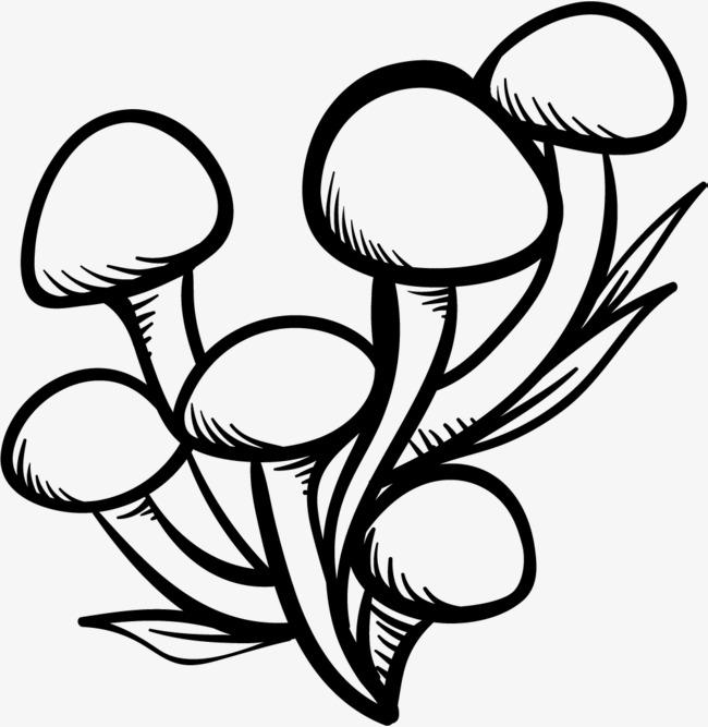 草丛手绘简笔画图片