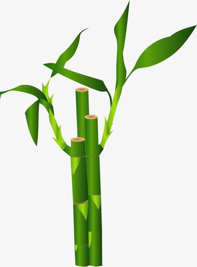 手绘绿色卡通竹子