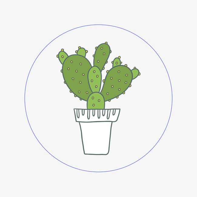 手绘仙人掌植物图