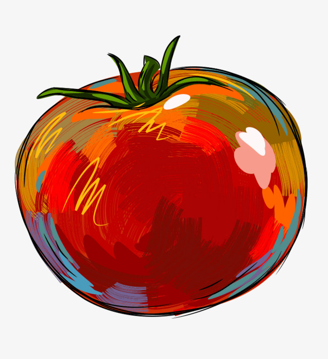 红色番茄一个手绘彩色马克笔风格果蔬矢量