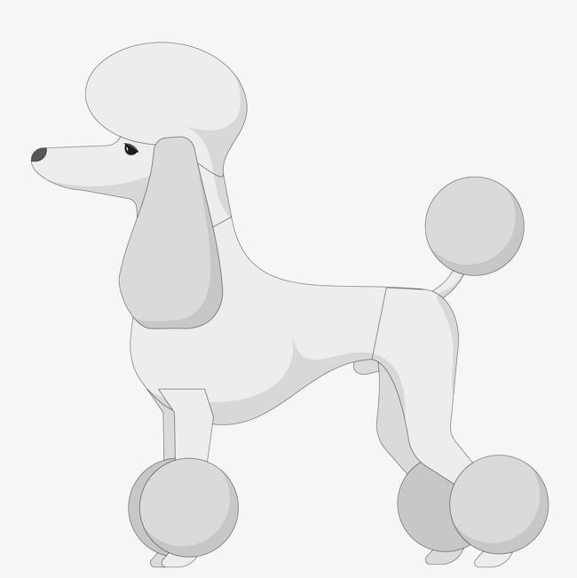 卡通可爱的贵宾犬设计