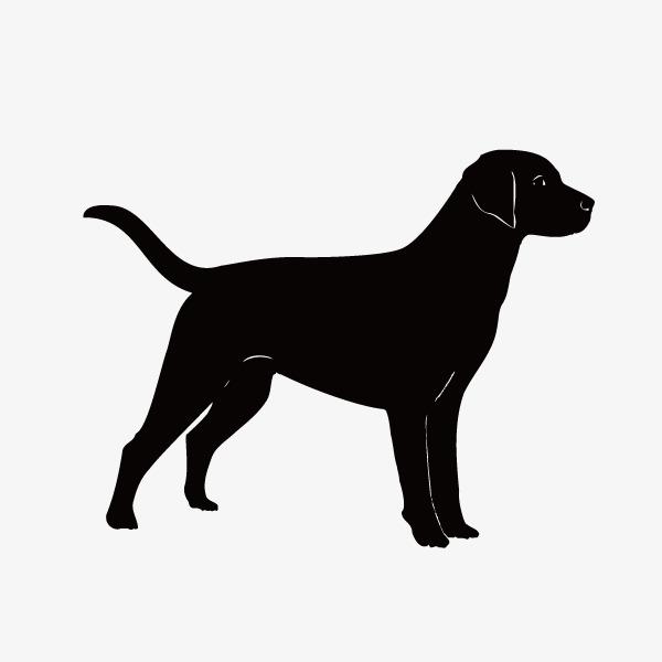 黑色小狗手绘简图