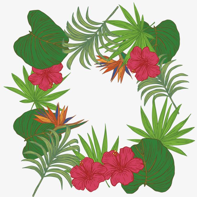 漂亮的热带植物边框