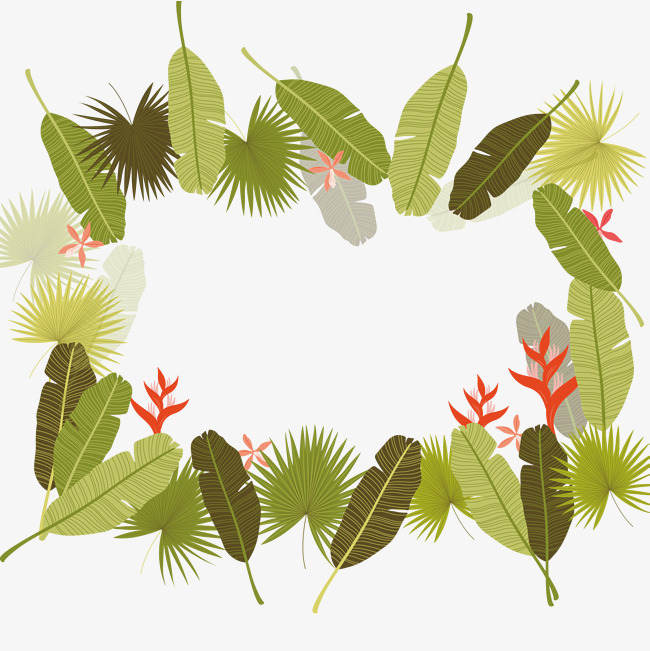 热带植物叶子边框