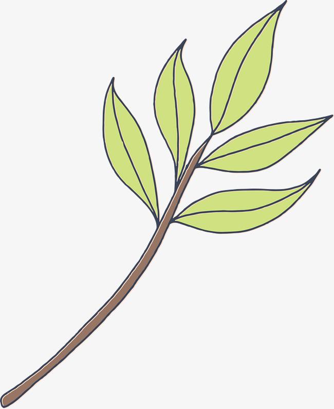 简笔卡通树叶简图png素材下载_高清图片png格式(编号图片