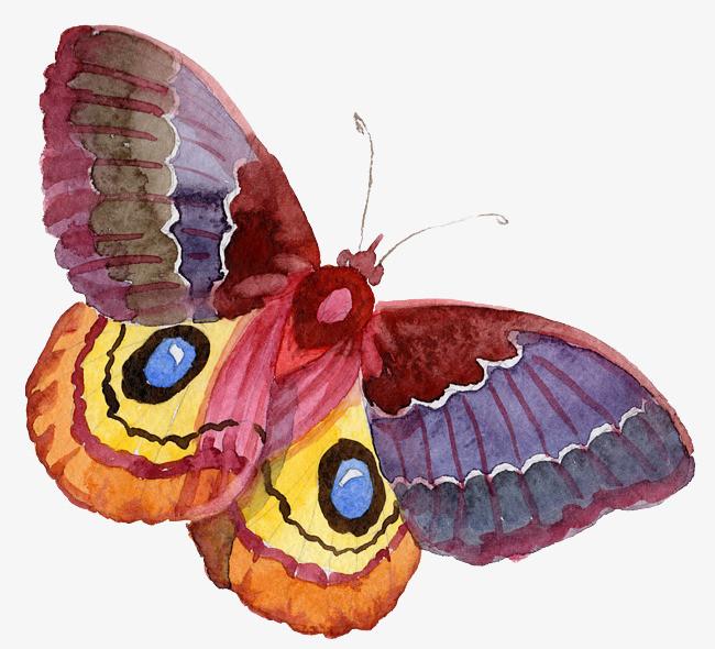 卡通可爱小动物装饰设计动物头像美丽蝴蝶