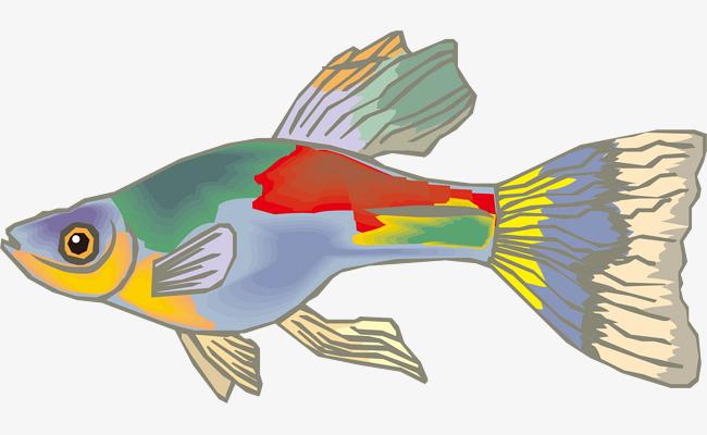 卡通海洋生物鱼文艺风海报设计
