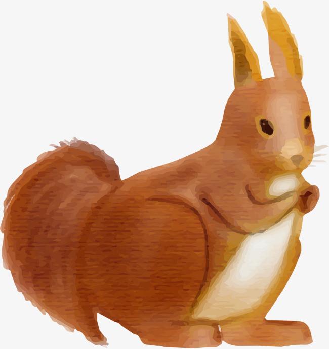 手绘可爱棕色松鼠