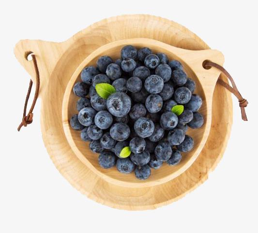 卡通手绘水果装饰海报设计蓝莓