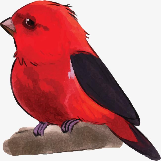 红色水彩手绘小鸟