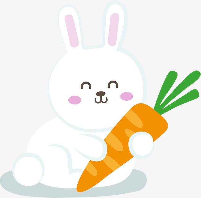 抱着胡萝卜的小白兔海蛇怎么泡洒图片