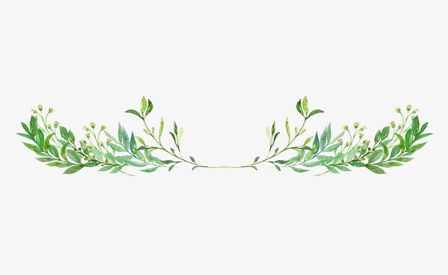 卡通绿叶装饰手绘文艺小清新png素材下载_高清图片png