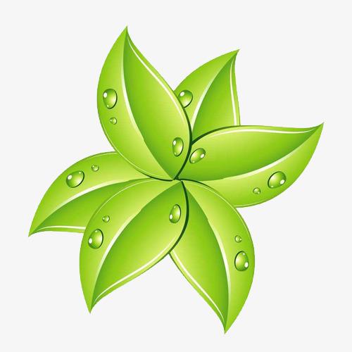 手绘卡通带水珠绿叶素材图片免费下载_高清png_千库网