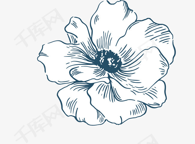 小清新唯美水彩花朵素描素材图片免费下载 高清png 千库网 图片编号10585637图片
