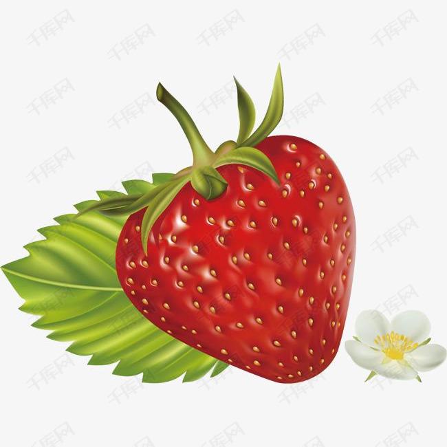 精美水果草莓