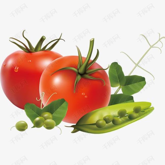 精美蔬菜番茄西红柿