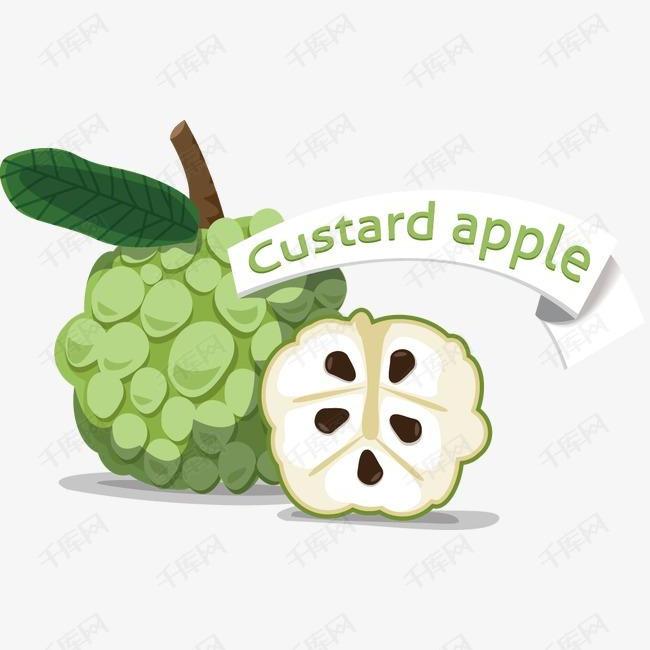 卡通手绘水果番荔枝