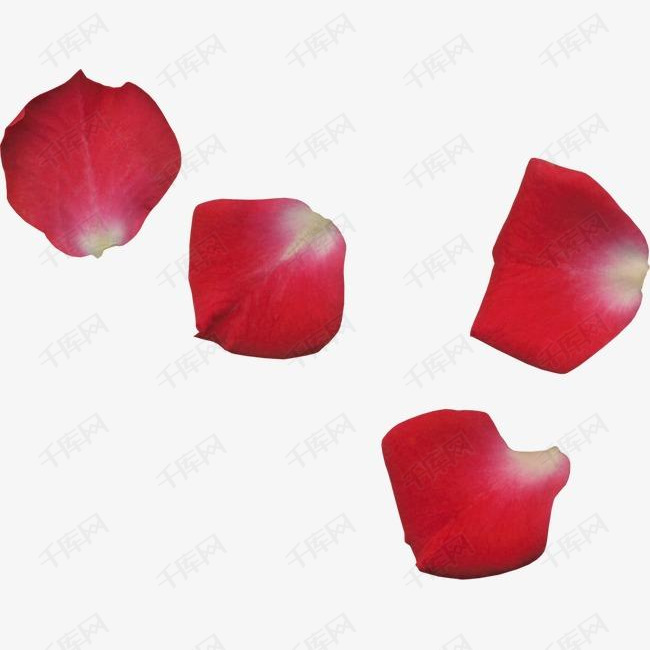 红色的花瓣