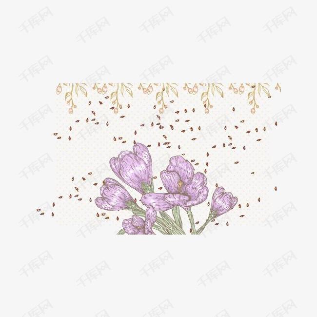 花卉专辑背景