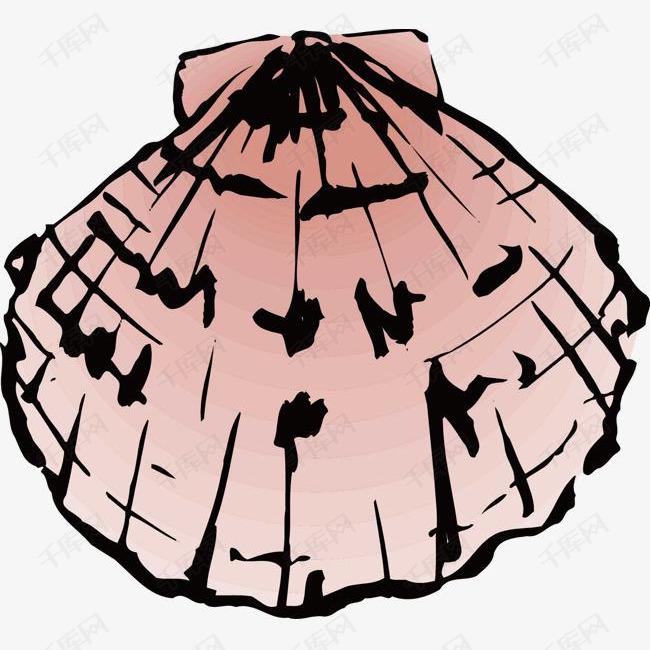 卡通手绘海蚌