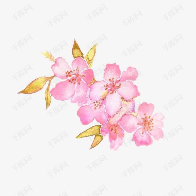 樱花手绘素材图片免费下载 高清卡通手绘png 千库网 图片编号4966332