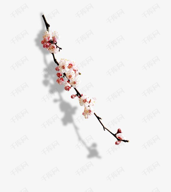 小清新折纸梅花一枝梅