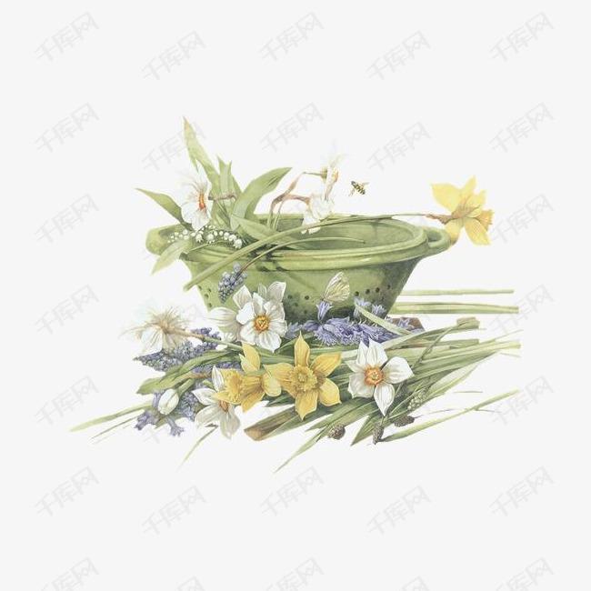 手绘花图片森林系 花朵花盆素材图片免费下载 高清装饰图案png 千库网 图片编号62316图片