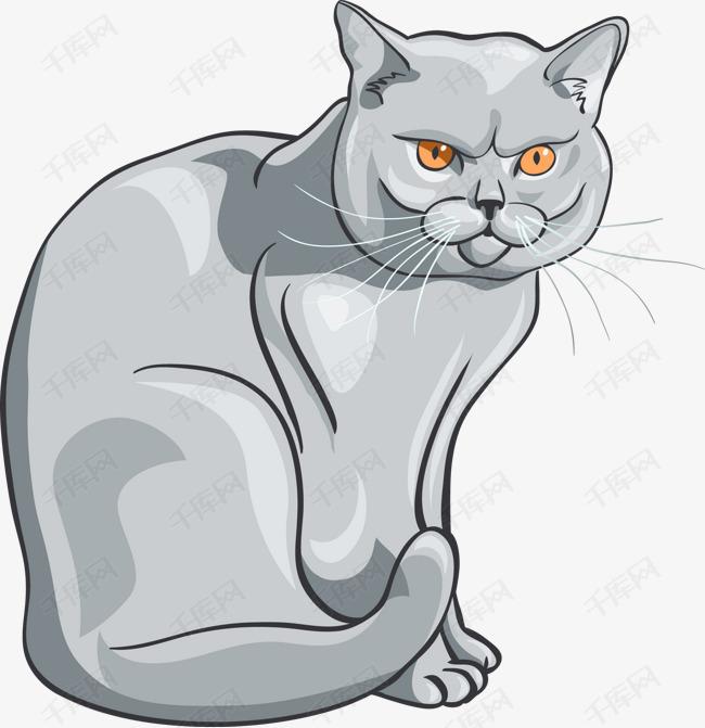 矢量波斯猫