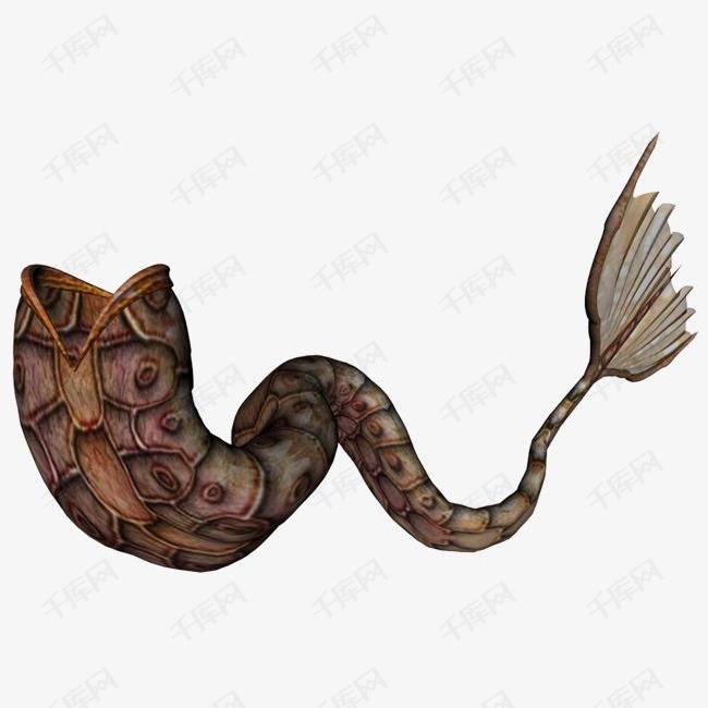铠甲形美人鱼尾巴