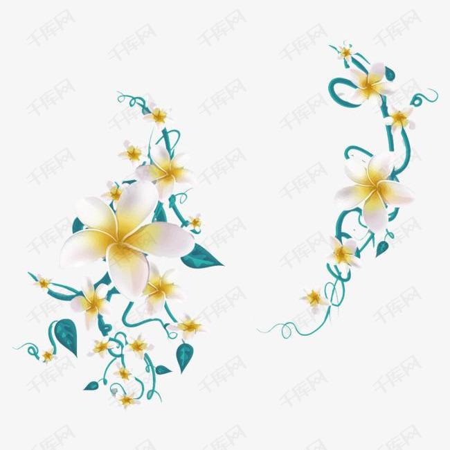 漂亮的白色小花朵