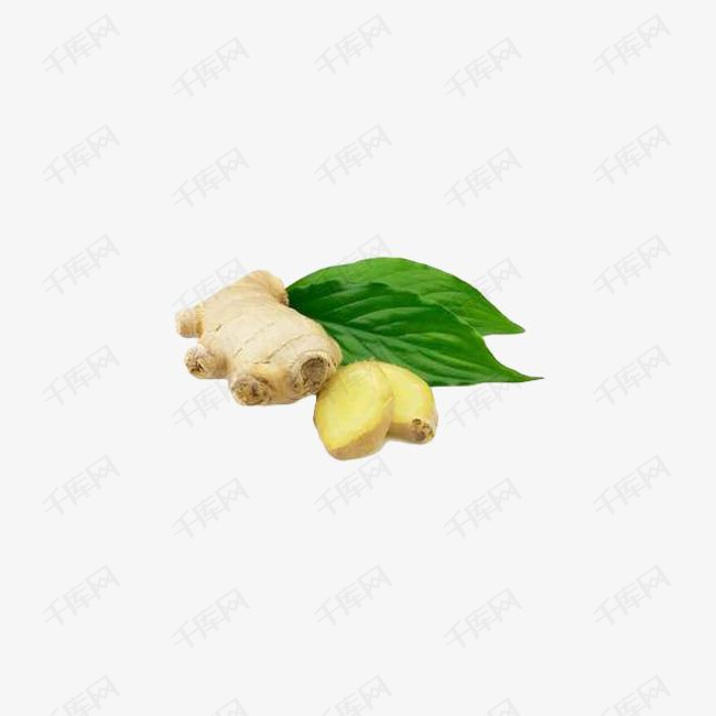 生姜 生姜叶 感冒 植物素材图片免费下载 高清psd 千库网 图片编号8237659