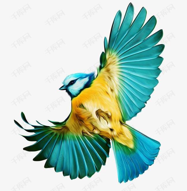 手绘蓝色展翅飞翔的小鸟素材图片免费下载 高清装饰图案png 千库网 图片编号5478666