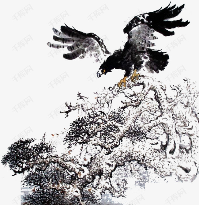 飞过丛林的海雕素材图片免费下载 高清png 千库网 图片编号8401388