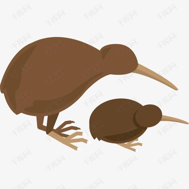 新西兰特种鸟类