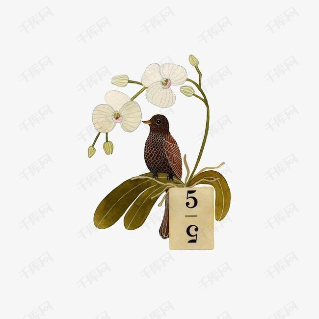 手绘花鸟日历