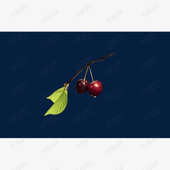 带水珠的樱桃
