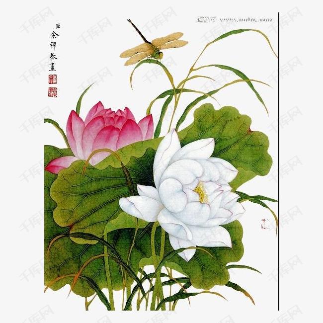 手绘唯美荷花素材图片免费下载 高清装饰图案png 千库网 图片编号2403637图片
