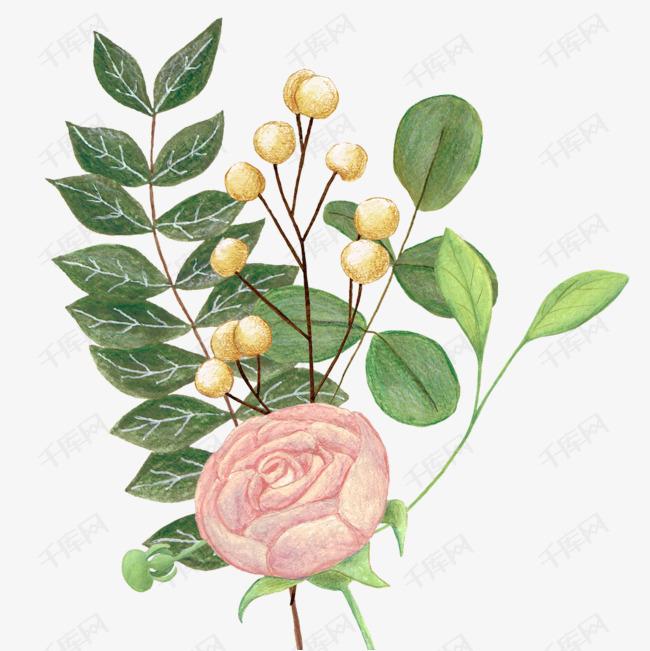 卡通玫瑰花绿叶手绘的素材免抠卡通手绘玫瑰花多种绿叶植物花藤装饰浪漫花卉小清新蝴蝶花藤