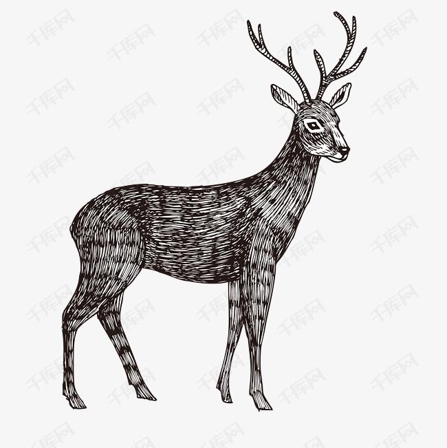 手绘矢量麋鹿素材图片免费下载 高清psd 千库网 图片编号9565384