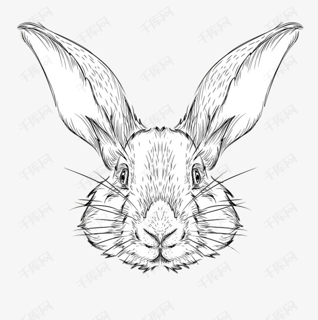 手绘兔子素材图片免费下载 高清卡通手绘png 千库网 图片编号5999318