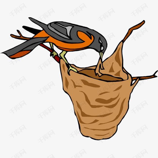 手绘鸟窝和鸟的素材免抠手绘画鸟窝小鸟矢量鸟窝矢量小鸟喂食的鸟