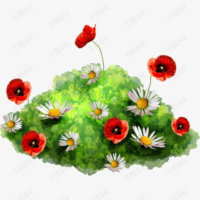 草地上的鲜花菊花手绘水彩的素材免抠鲜花菊花虞美人草地植物手绘菊花水彩花卉手绘鲜花素材草地花卉图片