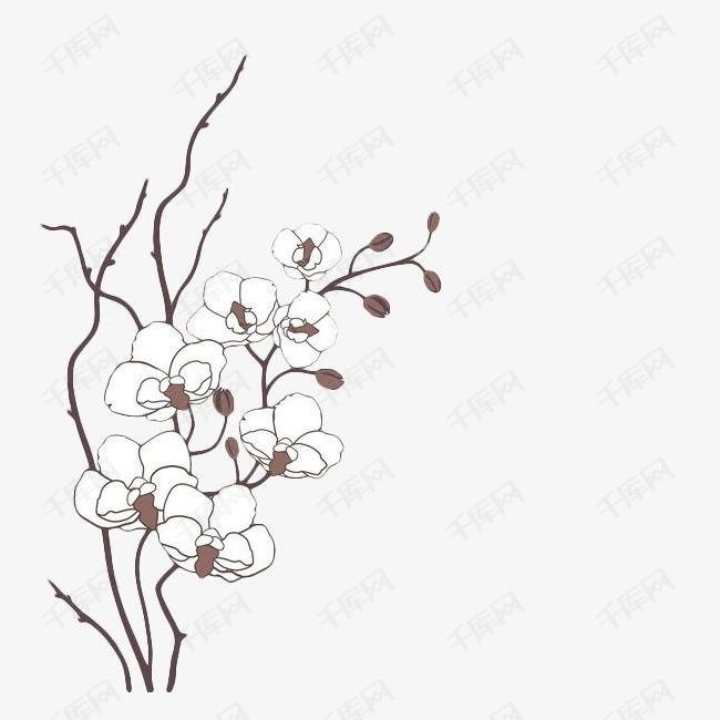 手绘白色梅花素材图片免费下载 高清png 千库网 图片编号9300265