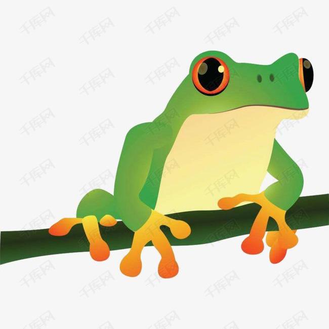 手绘牛蛙图片