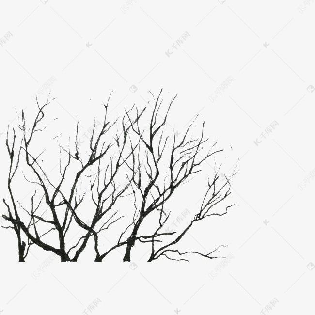 冬季干枯树枝装饰素材图片免费下载 千库网