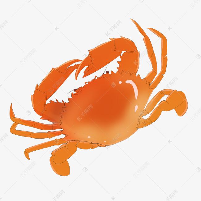 白露手绘美味海鲜大闸蟹一只素材图片免费下载 千库网